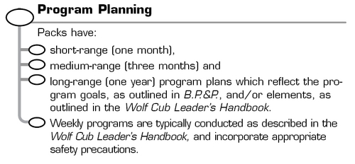 Cubs-ProgramPlanning-Standards.png